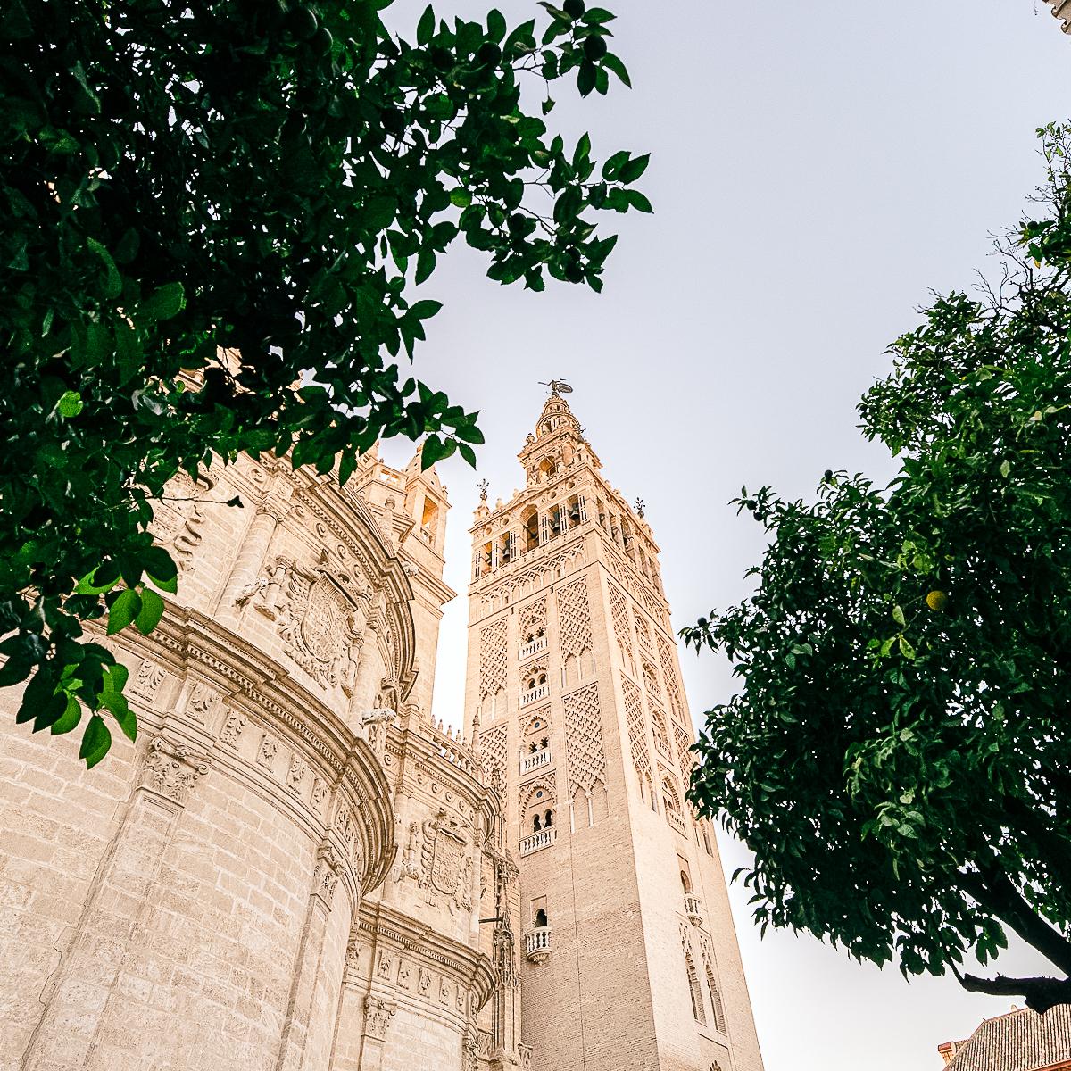 Sevilla Camino de Santiago