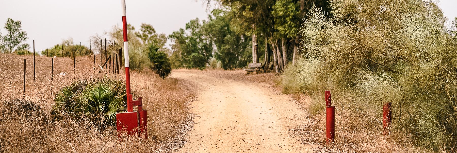 Guillena Camino de Santiago