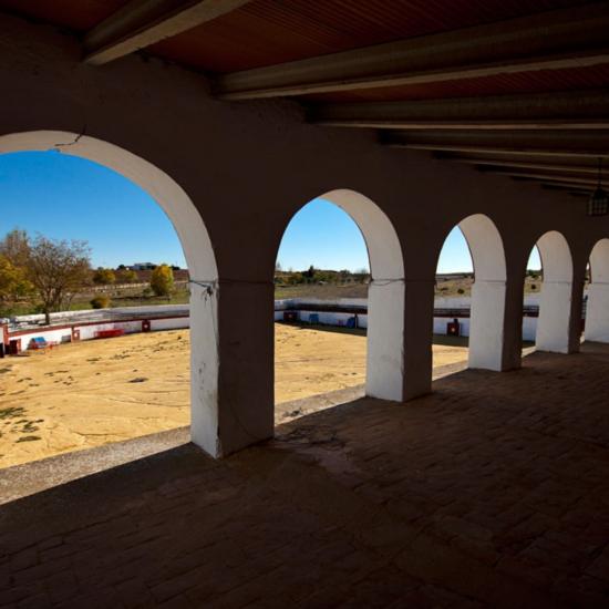 La plaza de toros de Puebla de Sancho Perez