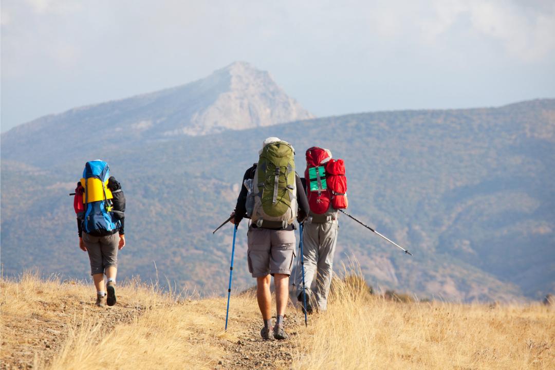 peregrinar con o sin bastón por el camino de la plata