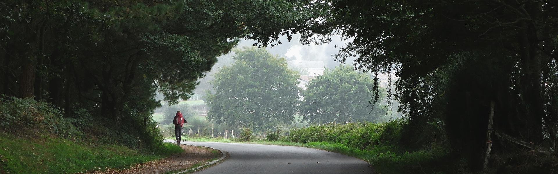 camino de santiago por la via de la plata