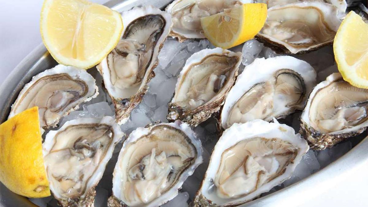 las ostras de arcade, una delicia de la gastronomía de pontevedra