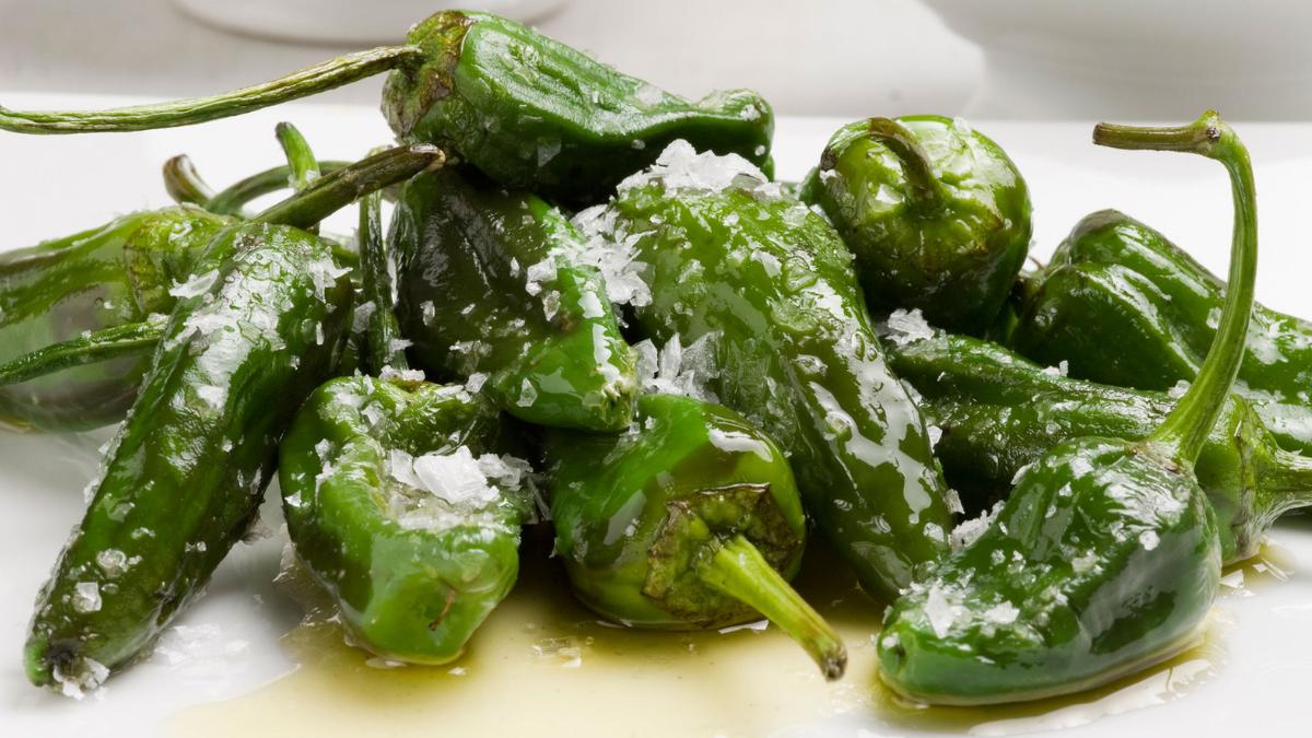 pimientos del padrón, plato típico de la gastronomía de galicia