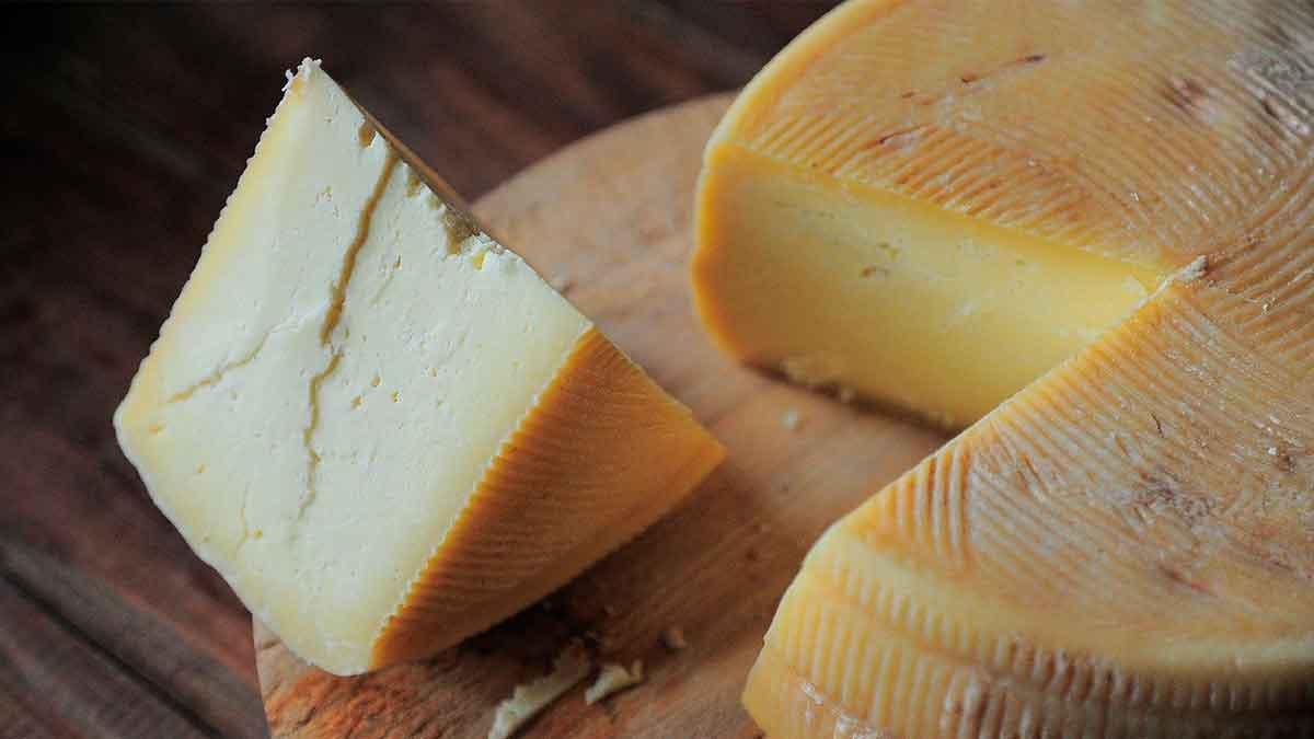 zamora queso ruta plata
